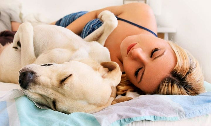 Love To Curl Up With Your Pets At Night? You May Want To Rethink This Bedtime Ritual