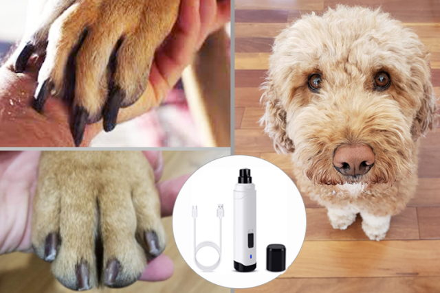 Casfuy Dog Nail Grinder Upgraded - Professional 2-Speed Electric Rechargeable Pet Nail Trimmer Painless Paws Grooming & Smoothing for Small Medium Large Dogs & Cats